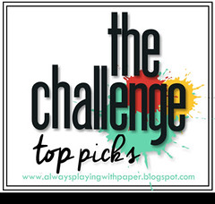 The Challenge - Honorable Mention