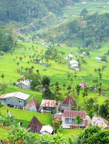 P16-Luzon-Mayoyao-Terrasses (4)