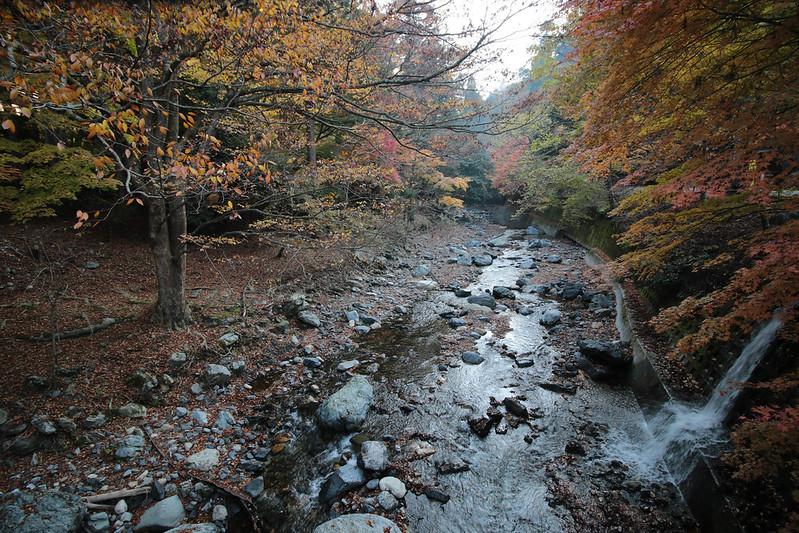 20141122-武奈ヶ岳&京都ライトアップ-0078.jpg