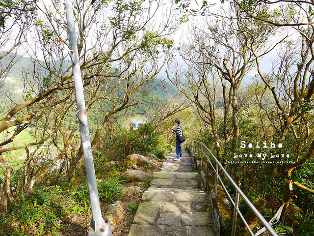 台北內湖一日遊踏青郊遊爬山碧山巖步道 (12)