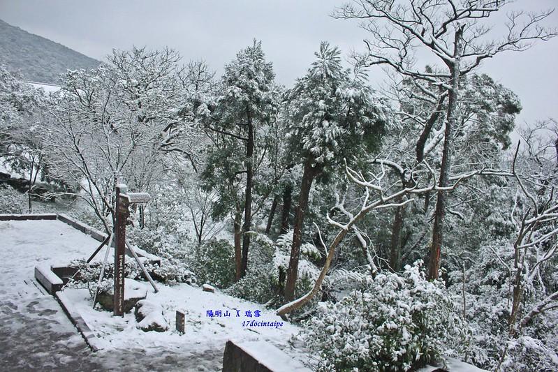2016-台北陽明山-瑞雪-難得一見的雪白山景-17度C隨拍 (50)