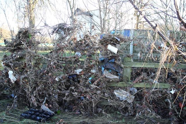Debris in the bushes