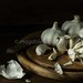 garlic by magshendey