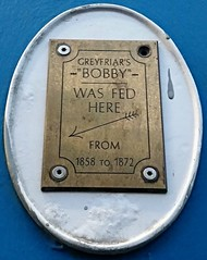 Photo of Greyfriar's Bobby brass plaque