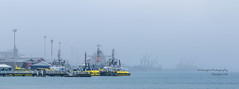 muzzpix-nz posted a photo:Facebook    | 500px  | WebsiteThe Port of Tauranga probably goes for a kilometre and half but a misty wet day makes for a disappearing  subject . Doesn't mean anything stops tho ... it never sleeps except for Christmas ...