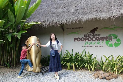 Elephant Poopoopaper Park