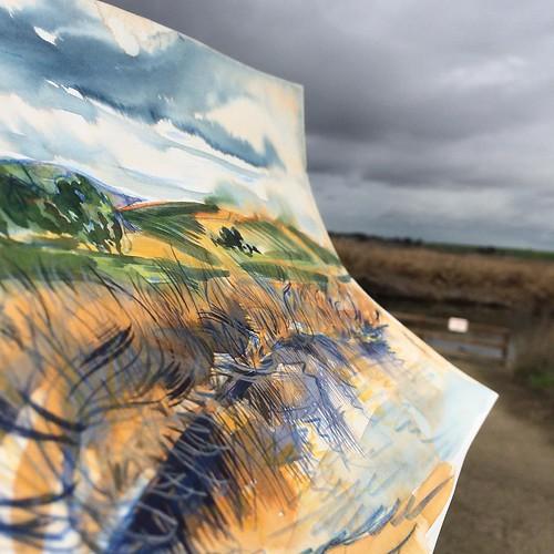 #storm is closing in #sketchbook #sketchbook94 #pleinair #painting #watercolor #watercolorpainting #stormyskies #ochre #indigo #green