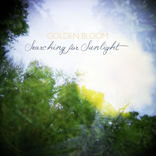 Golden Bloom - Searching for Sunlight