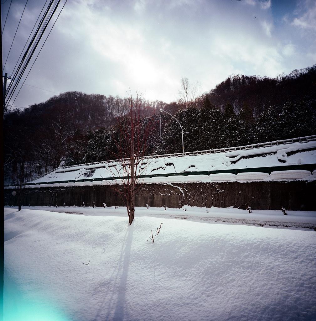 北海道神宮 / Kodak Pro Ektar / Lomo LC-A 120 2016/02/03 這其實是我在同一趟旅行第二次來北海道神宮,第一天和在札幌唸書的朋友來,才知道原來不可以向神明要求什麼。在札幌的最後一天還是想來神宮這裡重新祈求一次!  用 Lomo LC-A 120 拍的畫面,我還滿喜歡的!  Lomo LC-A 120 Kodak Pro Ektar 100 120mm 8280-0003 Photo by Toomore