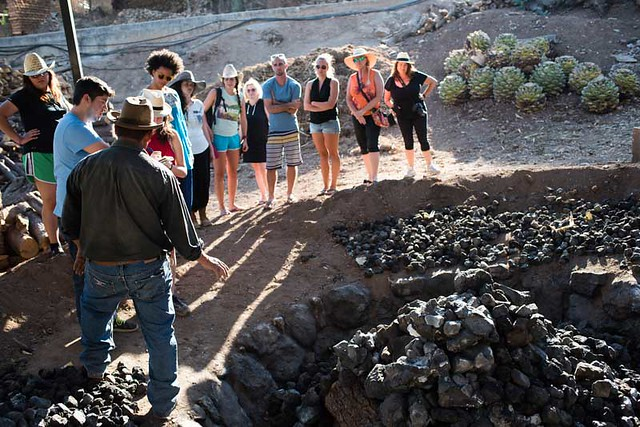 Cooking Mezcal in Volcanic Oven