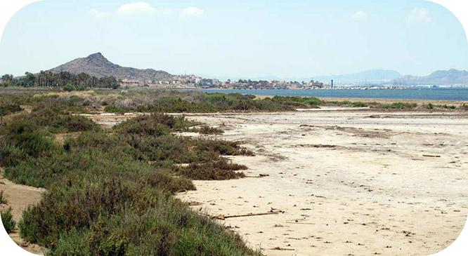 MC y PSOE... ¿Están con las constructoras de Novo Carthago o con el Mar Menor y sus vecinos