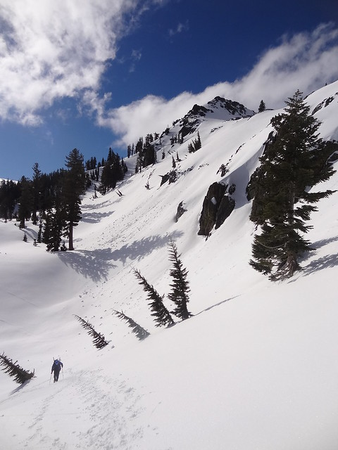 Powder on Tallac's flanks