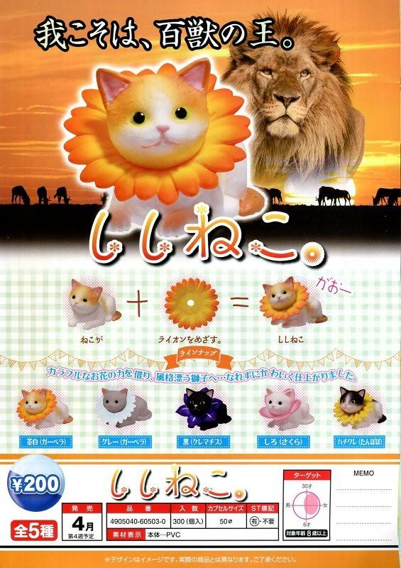 EPOCH【獅子貓】ししねこ。 可愛貓星人一秒變百獸之王!!