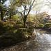 Kiyomizu-dera Temple by michaelrcfj