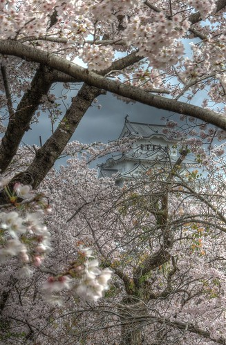 Himeji Castle area on APR 05, 2016 vol02 (7)