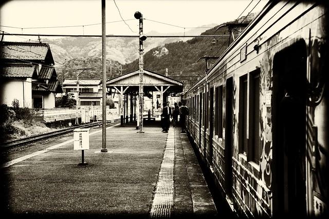 Stray Station