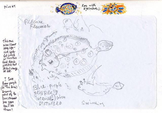 sk16_underwater_06