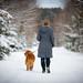 Winter Walk by Tom Landretti