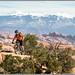 Mountain Biking Magnificent 7
