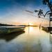 | The Boat Shimmering under the Morning Light |