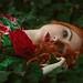 a simple redgreen. by Anne Hoffmann - Herzmensch Fotografie