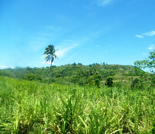 P16-Negros-Bacolod-San Carlos-route (46)