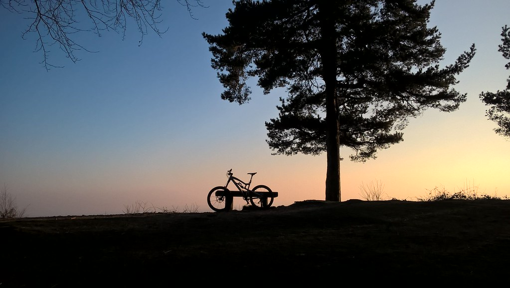 Surrey Hills Silhouette