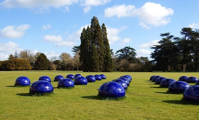 Alien Blobs