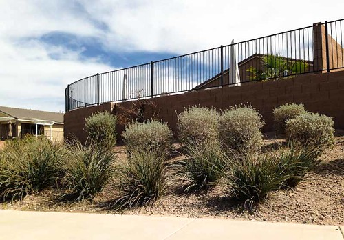 arizona usa night railing triking maricopa