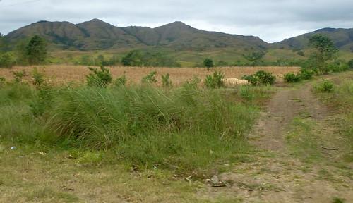 P16-Luzon-Tuguegarao-Tabuk-route (7)