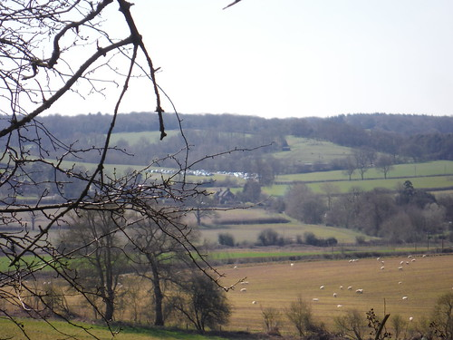 Pang Valley, from Burgess Copse, with cars parked at Bucklebury Farm Park