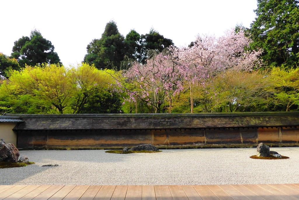 Ryoan-ji, Hojo Teien (Rock Garden) -1 (April 2016)