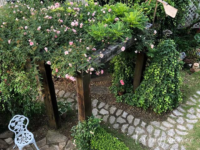 garden-17