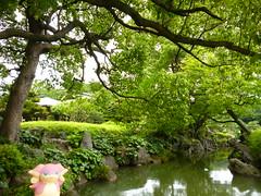 Audino in Fukagawa, Tokyo 35 (Kiyosumi Garden)