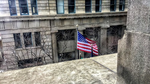 flag unfurled outside viewfromwindow windy winter trees buildings architecture usa city ledge