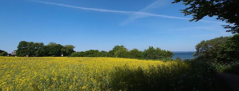 P1013056 Panorama