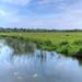 Water meadows, River Nene, Northamptonshire