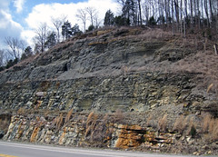 Fort Payne Formation-Chattanooga Shale-Cumberland Formation; Burkesville West Rt. 90 roadcut, Kentucky, USA) 1