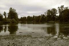 The Willamette River in Eugene, Oregon