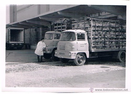 camions transport pollastres Tojeiro Fuentes