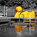 big yellow duck (boat)
