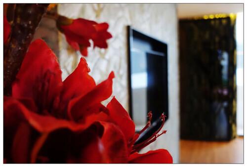 【轉貼】【台中汽車旅館】雲河概念旅館 超大主題車庫房~住宿送宵夜~豐富自助早餐