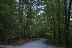 Tunnerl Ridge Road