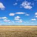 2017.06.25.2704 Serengeti Plain by Brunswick Forge