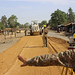 UNAMID rehabilitates strategic road in Central Darfur