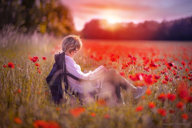Im Mohnfeld - in to the poppy field
