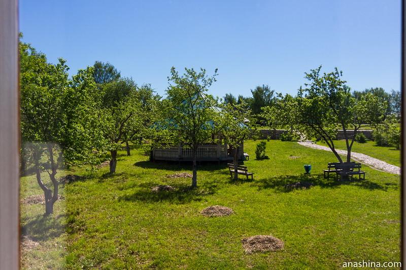 Фруктовый сад, Музей деревянного зодчества, Суздаль