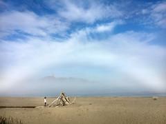 San Francisco Fogbow