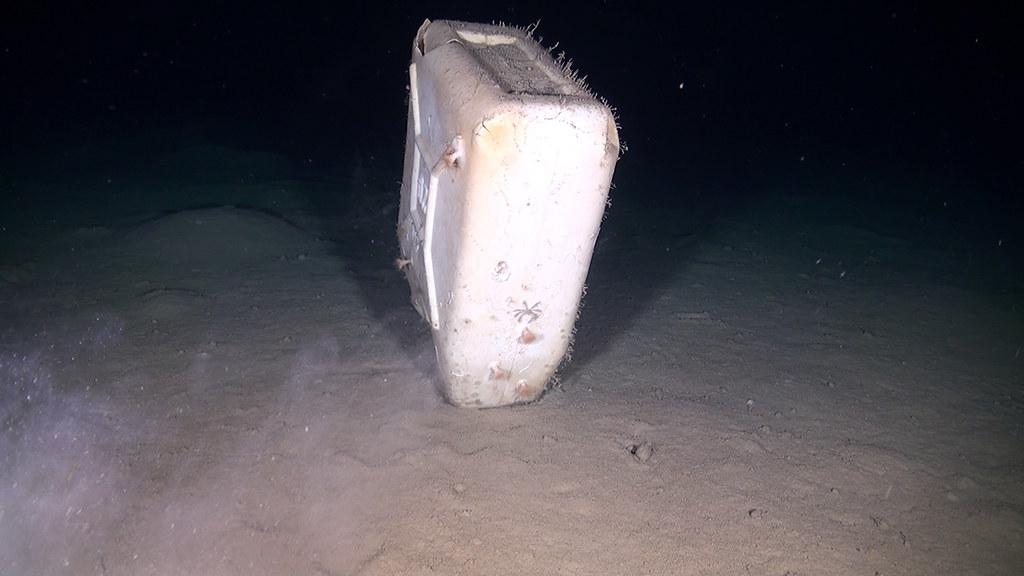 EUO © OCEANA 20180602 BancoDilBagno 2_garbage (1)