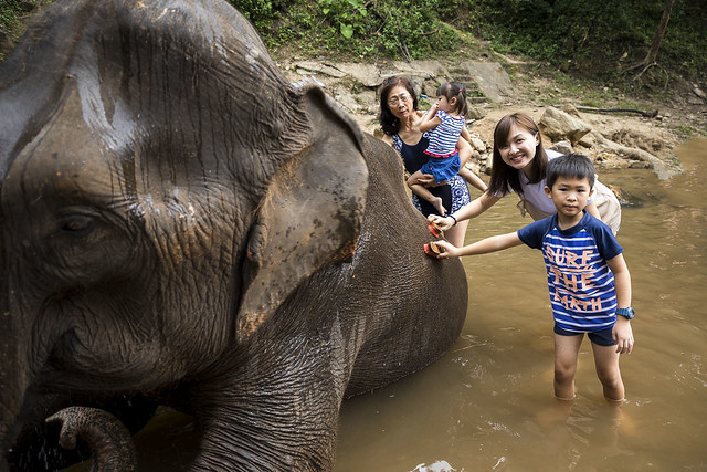 20171106_094 Elephant Bath